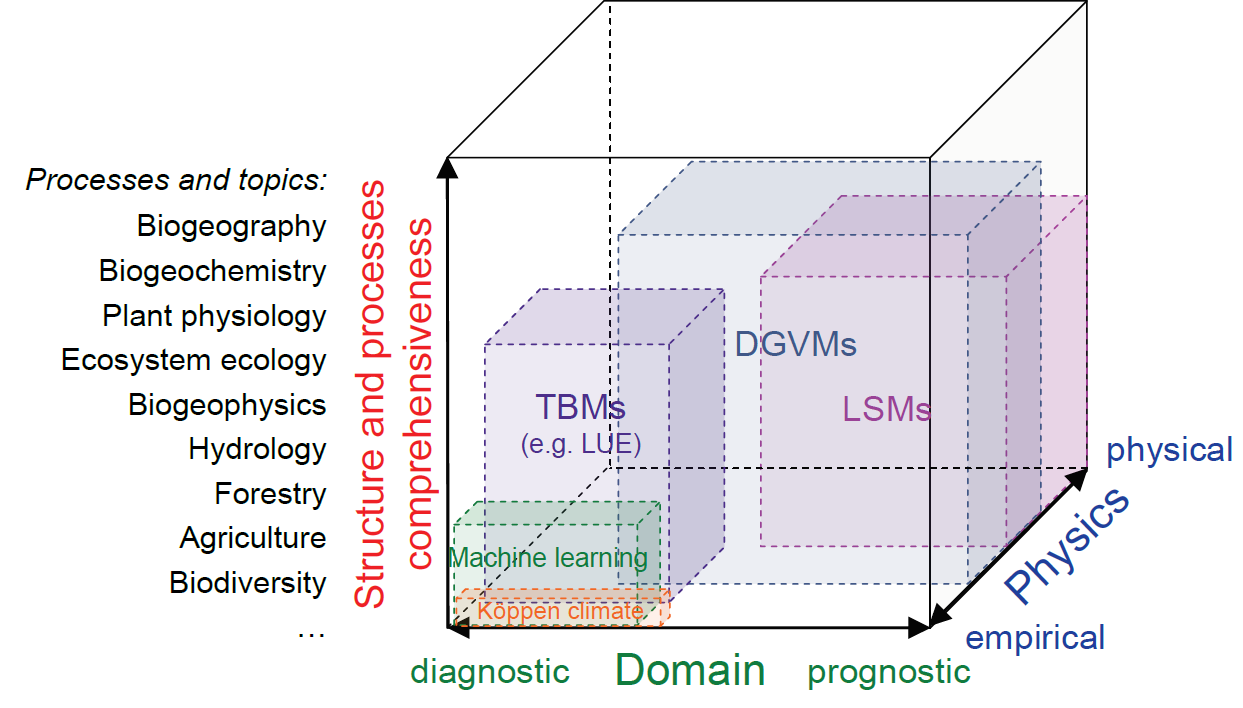 Dimensions of global ecosystem models